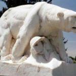 «Полярный медведь» – памятник бесславных битв за русский север