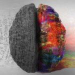 Мозг работает на 10 процентов:  миф или реальность?